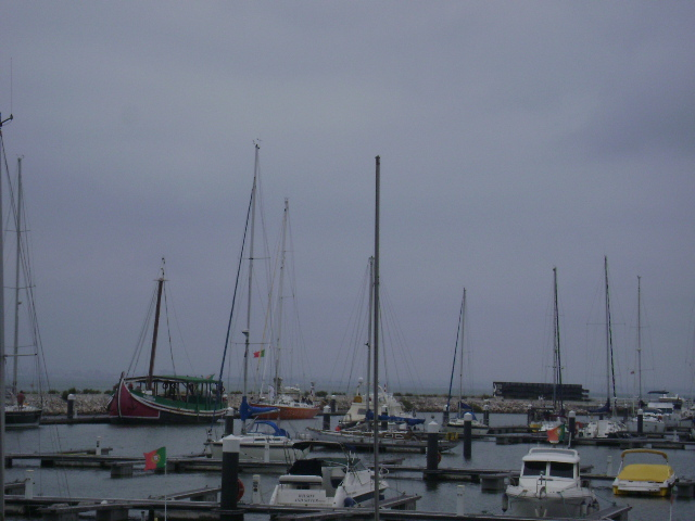 The view of the marina from the esplanade where everyone gathered for the talk. Oceans of Hope is at the left, on the back, the bright orange one.